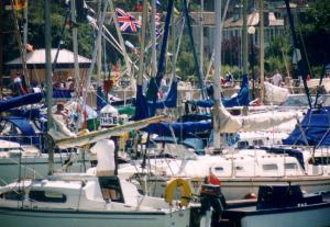 A busy summer day in the harbour