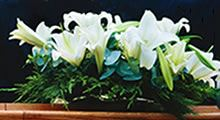 Bereavement Services - Cremation